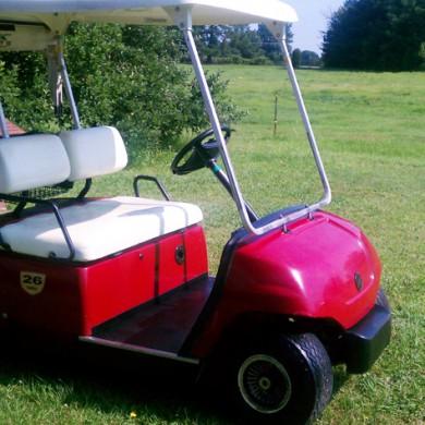 golf cart rentals raleigh nc